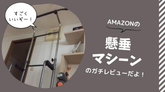 Amazonの懸垂マシーンのガチレビューだよ