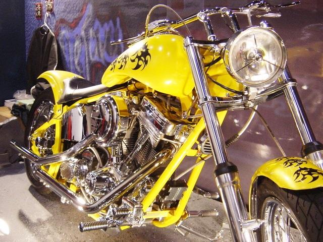 ハーレー?っぽいアメリカンバイク